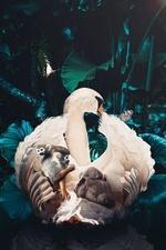 Фото Лебедь с обезьянками на нем