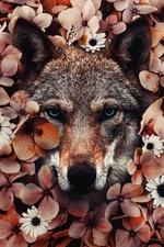 Фото Морда волка в окружении цветов