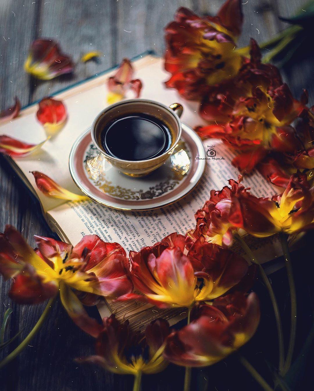 Фото Чашка кофе на блюдце стоит на открытой книгев окружении тюльпанов, фотограф Татьяна Миронова - mironovatanyahoos