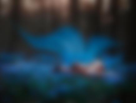 Фото Обнаженная девушка с голубыми крылышками лежит на весенней цветущей поляне, фотограф Светлана Беляева