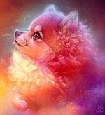 Фото Милый щенок в профиль, by PuffyGator