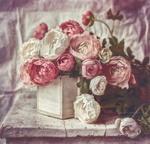 Фото Розовые и белые розы в коробке на столе