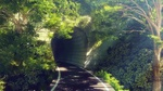 Фото Дорога в тоннель
