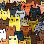 Фото Много разноцветных котиков, by 0013Starri