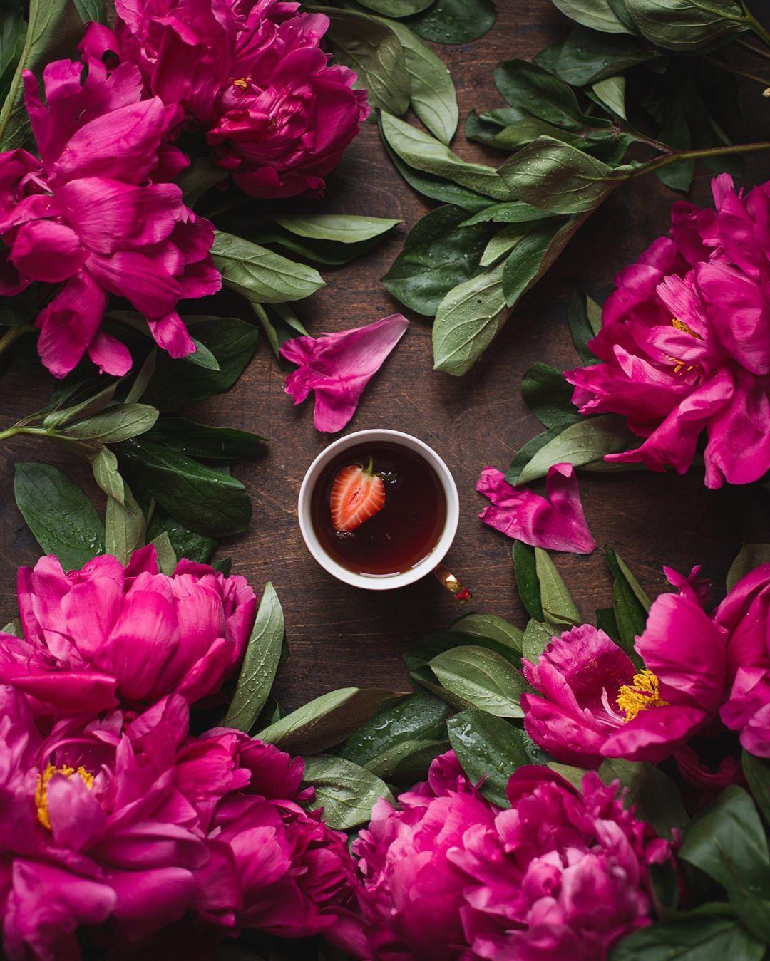 Фото Чай с клубникой в окружении розовых пионов, by katerina. myshkina