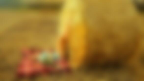 Фото Девушка лежит на покрывале, подняв ножки к валуну сена. Фотограф Вадим Аксенов