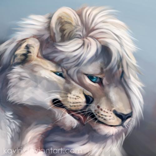 Фото Лев и львица рядом с друг другом, by kavlri