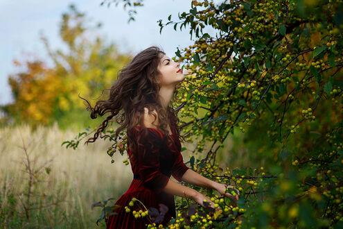 Фото Девушка в бордовом платье стоит на фоне природы и держится руками за ветку дерева, фотограф Kristina Pleсkaitytе (© Arnas), добавлено: 10.09.2021 19:18