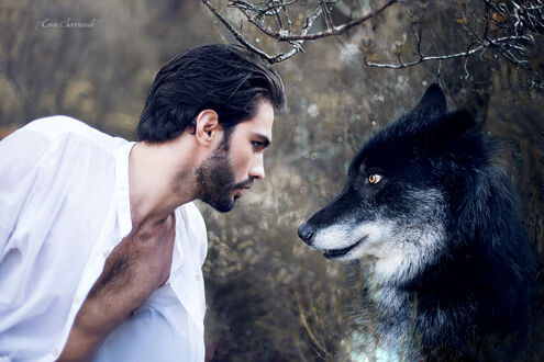 Фото Парень с бородой напротив собаки, by Eva Sarraute (© lRB02), добавлено: 11.09.2021 07:19