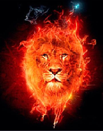 Анимация Огненный лев в языках пламени и синего дыма