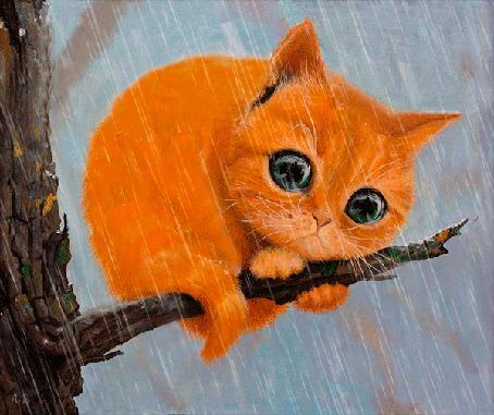 Анимация И в снег, и в дождь грустный мартовский котик ждет свою любовь