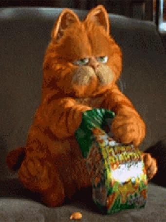 Анимация Гарфилд / Garfield жадно ест чипсы (© Anatol), добавлено: 26.03.2015 15:04