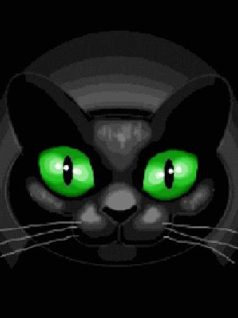 Анимация Черный кот с яркими зелеными глазами