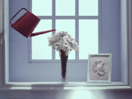 Анимация Вода из красной лейки оживляет цветы и наполняет вазу (© Юки-тян), добавлено: 01.03.2015 02:09