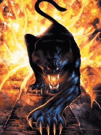 Анимация Черная пантера в сполохах огня (© Anatol), добавлено: 26.03.2015 15:20