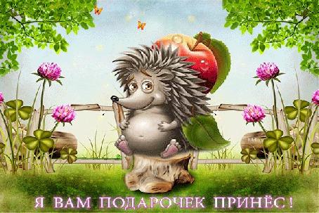 Анимация Ёжик с яблоком сидит на пеньке на зеленой полянке среди цветов,(Я вам подарочек принес!)