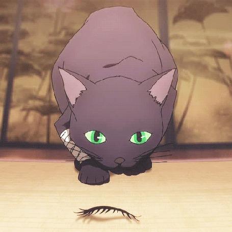 Анимация Кошка из аниме Death Parade / Смертельный парад (© Maya Natsume), добавлено: 26.03.2015 18:45