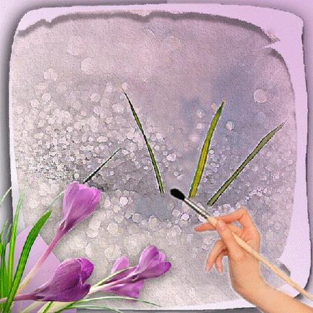 Анимация Рука рисует кисточкой крокусы на снегу (© царица Томара), добавлено: 28.03.2015 00:39