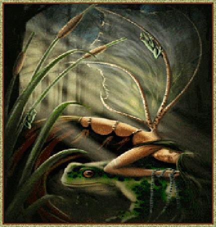 Анимация Девушка эльф положила руки на гигантскую лягушку (© elenaiks), добавлено: 28.03.2015 06:12