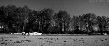 Анимация Авто Форд Мустанг / Ford Mustang проносится на невероятной скорости по городу, оставляя за собой вихрь из опавших осенних листьев