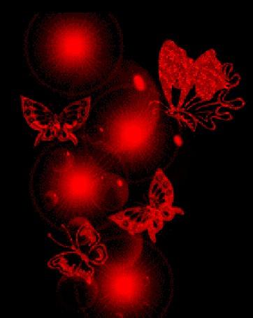 Анимация Красные бабочки на черном фоне