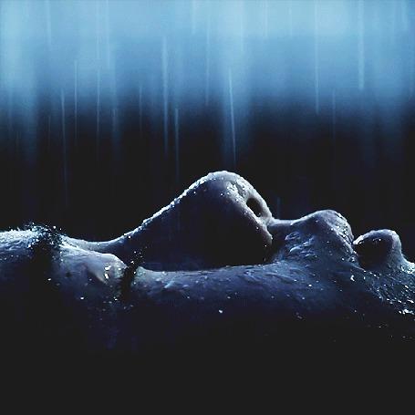 Анимация На лицо человека с закрытыми глазами падает дождь (© BlackAssol), добавлено: 31.03.2015 12:58
