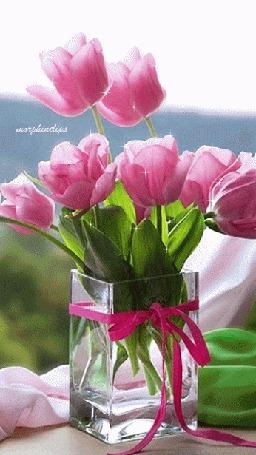 Анимация Букет розовых тюльпанов стоит в вазе