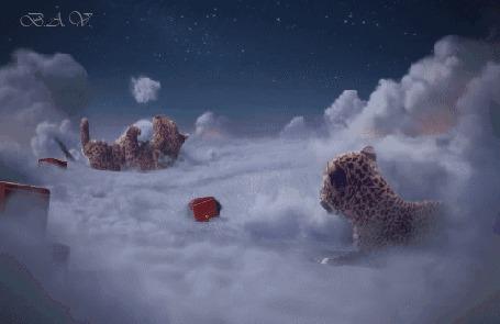 Анимация Два маленьких леопарда играют на снежном облаке, кадры из рекламного ролика Cartier Wintertale / Зимняя сказка от Картье (© Ann .), добавлено: 01.03.2015 20:58
