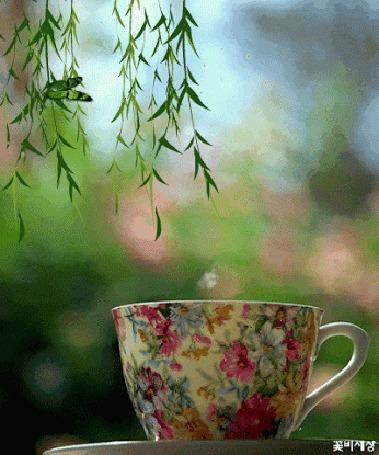 Анимация Над чашкой с горячим напитком порхает бабочка