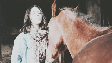 Анимация Девушка целует лошадь