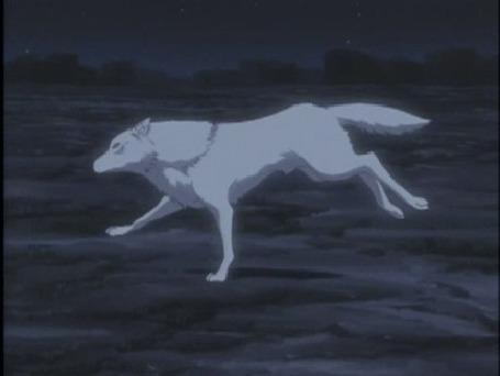 Анимация Киба / Kiba в образе волка герой из аниме Волчий дождь / Wolfs Rain
