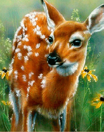 Анимация Маленький пятнистый олененок стоит среди травы с желтыми цветами (© Akela), добавлено: 03.03.2015 02:16