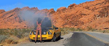 Анимация Девушка смотрит под капот желтой машины (© Seona), добавлено: 03.03.2015 12:44