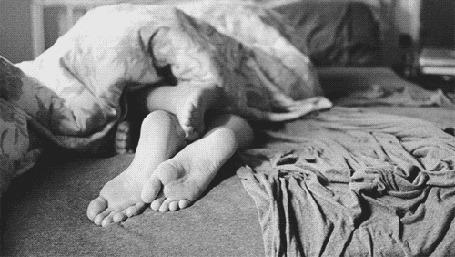 Анимация Влюбленные в постели, один из их шевелит ногой (© zmeiy), добавлено: 03.03.2015 18:26
