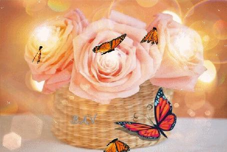 Анимация Розы в плетеной корзинке на которой сидит бабочка, вокруг блики света и летают бабочки