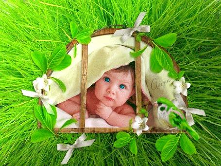 Анимация Малыш выглядывает из деревянного оконца, в обрамлении зелени и цветочков, рядом сидит птичка