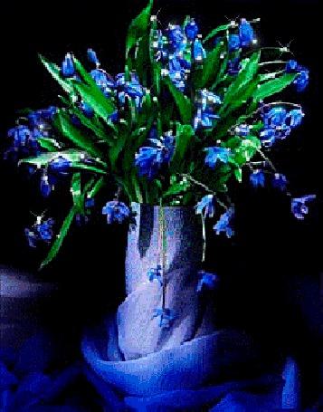 Анимация Букет синих подснежников с зелеными листьями находится в вазе, укутанной в голубую ткань