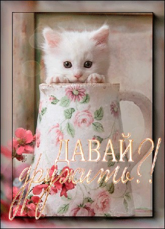 Анимация В стакане, с нарисованными розовыми цветочками, сидит белый котенок (ДАВАЙ дружить!)