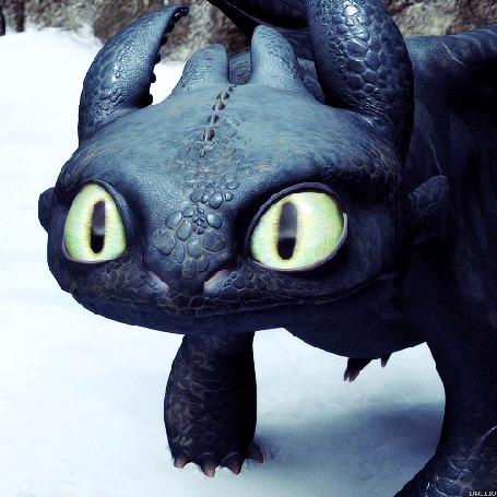 Анимация Дракон Беззубик, мультфильм Как приручить дракона / How to Train Your Dragon (© Anatol), добавлено: 08.03.2015 22:08
