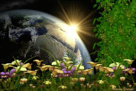 Анимация Цветы на фоне двигающейся планеты и солнца (© zmeiy), добавлено: 09.03.2015 11:40