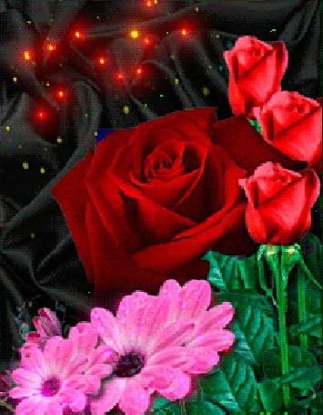 Анимация Красные розы и розовые герберы с летающими над ними светлячками (© Akela), добавлено: 09.03.2015 13:48