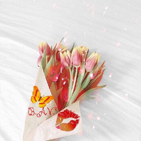Анимация На светлом фоне букет тюльпанов, завернутый в бумагу на которой отпечаток помады и сидит бабочка двигающая крылышками, сверху падают полупрозрачные лепестки и бутончики тюльпанов