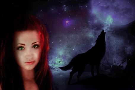 Анимация Девушка на фоне ночного леса, на заднем плане волк воет на луну