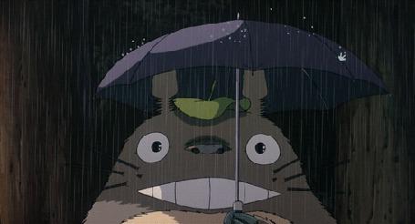 Анимация Тоторо / Totoro из аниме My Neighbor Totoro / Tonari no Totoro / Мой сосед Тоторо