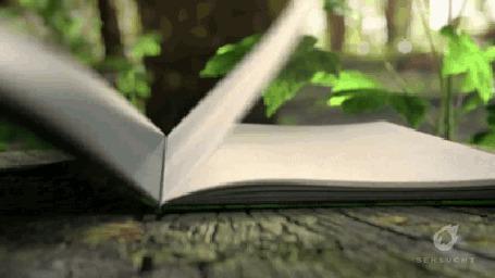 Анимация Отрывается книга и на ней появляется природа