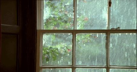 Анимация Дождь за окном и дерево (© Solist), добавлено: 19.03.2015 15:53