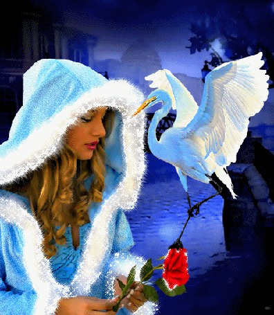 Анимация Девушка в голубом пальто с капюшоном, отороченным белым мехом держит в руках красную розу, рядом находится белый аист