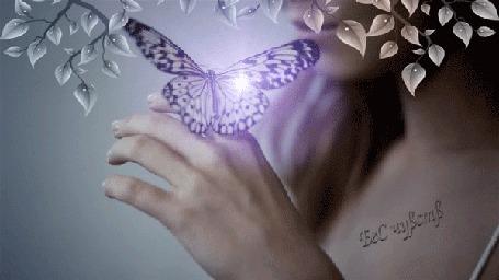Анимация Юлия Савичева с бабочкой на руке, танцует, кадр из клипа (БеС чувств) (© Bezchyfstv), добавлено: 21.03.2015 00:06