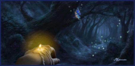 Анимация Вытянутая рука с огарком горящей свечи вдоль тропинки, ведущей через темный лес, в котором между деревьев светятся светлячки, а на одной из веток сидит эльфийка