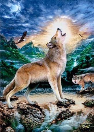 Анимация Волки стоящие у воды на фоне гор и облаков